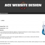 Ace Website Design 3