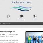 Blue Stream Academy